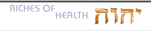 Riches of Health Logo